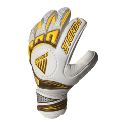 Aspire Goalkeeper Gloves