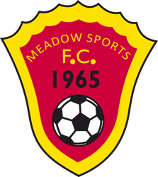 Meadow Sports FC badge