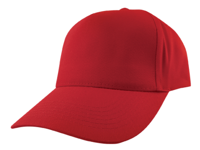 Baseball Cap (Embroidered)