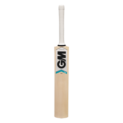 Gunn & Moore Cricket Bat