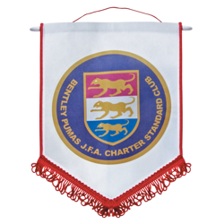 Pennants Red