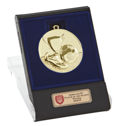 Triumph Gold Boxed Medal